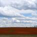 Cortez Colorado Farm Land