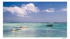 "Dreamland Mauritius - Welcome to ""Trou aux Biches"" (Lionoche) Tags: ocean sea beach landscape sand searchthebest postcard mauritius paysage bluesea blueocean maxxum5d dynax5d trouauxbiches lemaurice supershot interestingness38 i500 abigfave imamauritian"