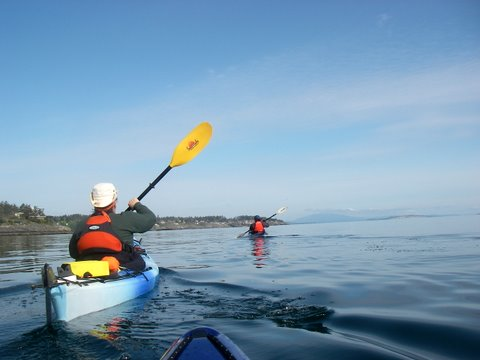 Paddling Telegraph Bay