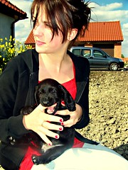 ruby ruby ruby ruby (peaceloveandola) Tags: flowers roof sky woman dog nature girl field car yellow female clouds puppy outside outdoors hoodie desert garage country shed poland bluesky canine jeans dirt nails teenager doggy brunette ruby cockerspaniel doggie ola lookingaway rednails