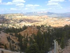 Day8d - Bryce Canyon (Bryce Canyon, Utah, United States) Photo