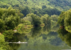 River Wye (saxonfenken) Tags: reflections riverwye england herefordshire river ultimateshot flickrsbest bravo abigfave explore superhearts colorphotoaward thumbsup bigmomma superhero 162 green onecolour pregamewinner fotocompetitionbronze gamewinner storybookwinner