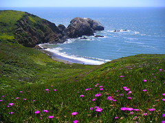 Picnic spot (zachdb) Tags: ocean california pink blue green beach northerncalifornia coast waves pacific marin shoreline iceplant headlands wildflowers hillside overlook
