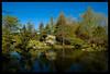 Japanese Garden pond (Ledio (mostly away)) Tags: nature d50 landscape nikon michigan postcard cranbrook cranbrookgardens peisazh nikonstunninggallery piesazh