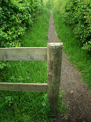 Fence post along Storeton footpath (jimmedia) Tags: fence post footpath along storeton