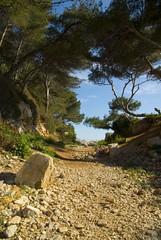 Cap d'Antibes - Chemin