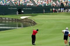 Tiger Woods #18 TPC (minds-eye) Tags: golf us woods open tiger ponte pga tpc vedra jacksovnille
