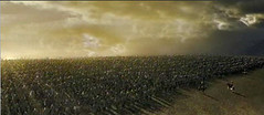 army at Pelenor Fields