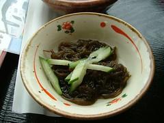 5.18午餐-褐藻