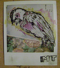 Polaroid MT 01
