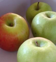 Apples (jhhwild) Tags: apples