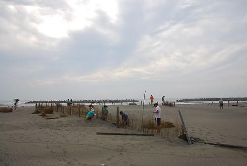 保護沙洲時情況(李育琴攝)