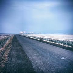 almost winter (with holga lens) (LiquidStep) Tags: almost winter holgalens holga landscape land road natural samsungnx