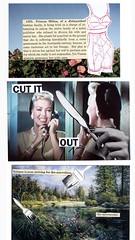 Three collages (Ingrid!) Tags: art collage paper postcard science newyorknewyork ingridspangler cutandpaste cutitout lanaturner douglassirk yetviennaalienistspronounceherquitesane