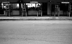 ni el loro (quino para los amigos) Tags: street argentina sex naked restaurant pig model nadia alone desert chairs ronaldinho nobody bitch playboy lonely asfalto lechon vacio maradona salta norte jujuy cabrito sillas tucuman norteargentino onlythebestare pavedwithstones forado fishnadie top20argentina miargentina