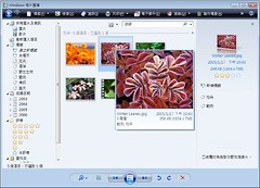 Windows 相片圖庫