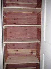finished cedar closet