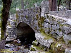 Yosemite2007_ZivKruger030 (Zeeev) Tags: california landscapes bluejay waterfalls redwoods yosemitenationalpark yosemitevalley