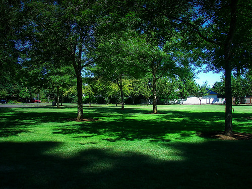 In The Shade - Neitling Park in Stayton Oregon