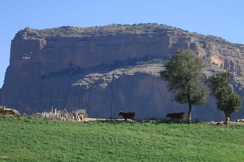 منتجعات تطوان المغربية .. مناظر خلابة واهم بعض المناطق المغربية 504524816_7084c24d53