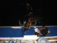 Night dive return4