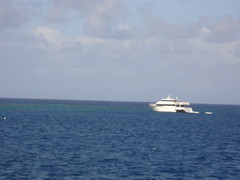 Pro dive boat two