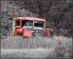 Abandoned Truck (smenzel) Tags: abandoned truck f5 v400 2007 woodinville interestingness205