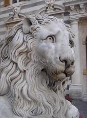 sad lion statue