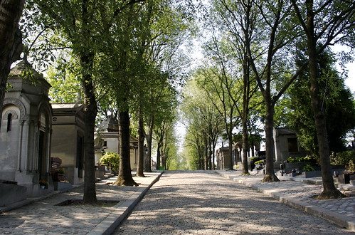 An avenue of graves
