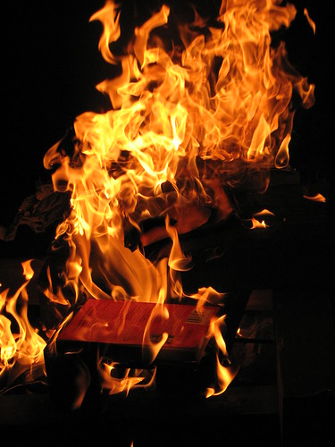 burning books fires up sales