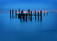 Sausalito Pilings at Dawn (Rob Kroenert) Tags: california ca bridge sea usa seagulls color sunrise landscape dawn bay long exposure gulls poles pilings sausalito sfchronicle96hrs