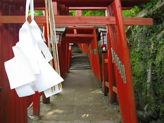 Red tunnel (jasonkrw) Tags: red white japan japanese gate shrine religion tunnel shimane shinto torii tsuwano 津和野 taikodaniinarijinja taikodani
