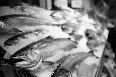 Pike Place Ilford HP5+ 6080 1216- (mojave1951) Tags: blackandwhite blackandwhitefilm pikeplacemarket ilfordhp5film