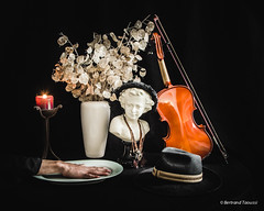 Ma main  couper (bertrand taoussi) Tags: chapeau hand hat main naturemorte projet522016 selfportrait stilllife violon