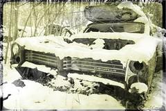 161123-20 Pontiac (clamato39) Tags: carwreck carcemetery cargraveyard cimetièredautos couràscrap auto car oldcars old ancient noiretblanc blackandwhite