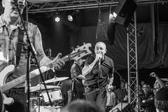 D75_3039.jpg (phil_tonic) Tags: live rock oi frankfurt thegenerators generators punk alternative subculture