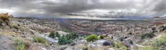Ornamental panorama (Chief Bwana) Tags: ut utah boulder highway12 rain bouldercreek bouldercanyon slickrock navajosandstone psa104 chiefbwana explored panorama 500views 1000views 2000views 3000views 4000views 5000views 6000views 7000views 8000views 9000views 10000views