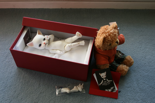 [Piposdoll Baha] Bones, mon petit chaton ^^ 455567634_95a65f3b13_o
