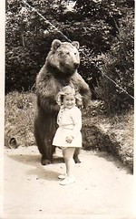 Carol and the bear