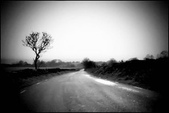 Lonely Road (andrewlee1967) Tags: road uk england blackandwhite landscape mono cheshire lonely andrewlee canon400d andrewlee1967 focusman5