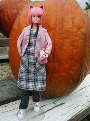 Halloween 2004 (ava111sk/Dollypimp) Tags: fall halloween japan pumpkin toy costume outfit doll collectible volks nadiff momoko wtg whosthatgirl petworks 04nf