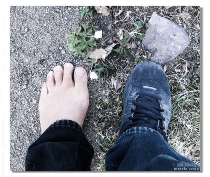 spc : april #2 : body parts :: kroppsdeler
