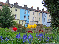 Colourful living.. (welshlady) Tags: houses castles southwales wow memorial 100views monmouth welsh colourful bandstand chepstow residences chepstowcastle standingovation helluva captainscott kodakz740 welshlady 10faves theworldthroughmyeyes abigfave shieldofexcellence favoritegarden welshflickrcymru