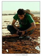 What Do You Find ? (Nasser Bouhadoud) Tags: green beach look canon 350d search friend do you taken mohammed what pure find nasser qatar camear محمد sealine saher ناصر allil النجار بوحدود