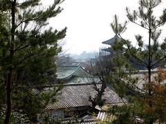 京都 東山・高台寺 ねね様が眠る「霊屋」からの眺望