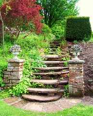 Rustic steps. (floato) Tags: uk england copyright favorite flower color colour green overgrown stairs century garden see photo interesting pretty foto fotograf photographer view photos britain unique famous watch group steps 21st favorites best professional explore photograph fotos enjoy attractive favourites welcome exquisite idyll fabulous favourite marvelous groups penrith expert grouping favorited eyecatching favourited fotograph fotographer floato pleaseaskifyouwanttouseaphotoiusuallysayyes