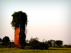 Chimney (Megan | When Harry Met Salad) Tags: chimney rural photo ruraldecay currituck ruralamerica easternnorthcarolina curritucknc ruralnc northeasternnc