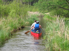 20070522 Paddlers paddling