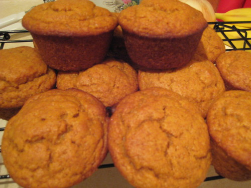 The Best Pumpkin Muffins - group shot