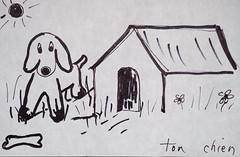 Ton chien... (anjoudiscus) Tags: chien sun smile trois soleil image ange mai maison sourire bonheur 2007 retour artnaf boisdecoulonge iann 60micro d80 tonchien
